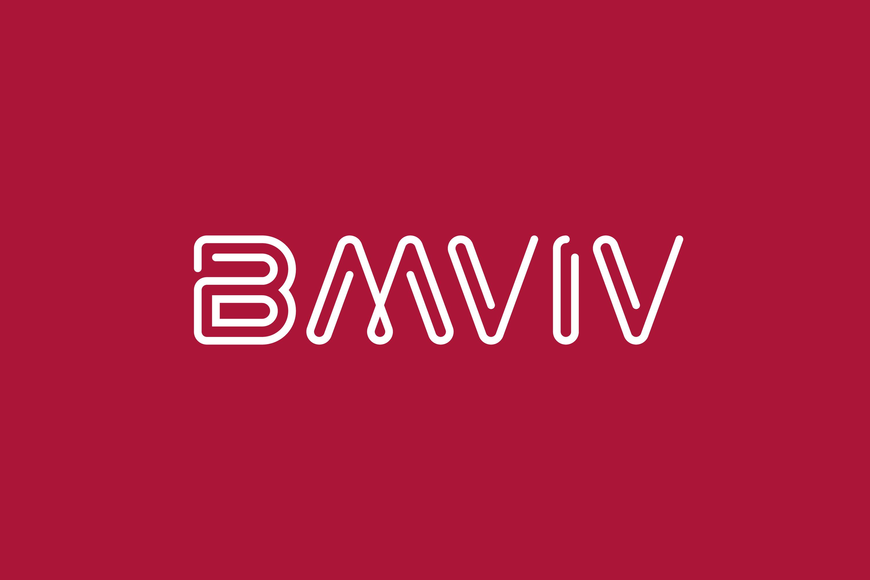 BMVIV